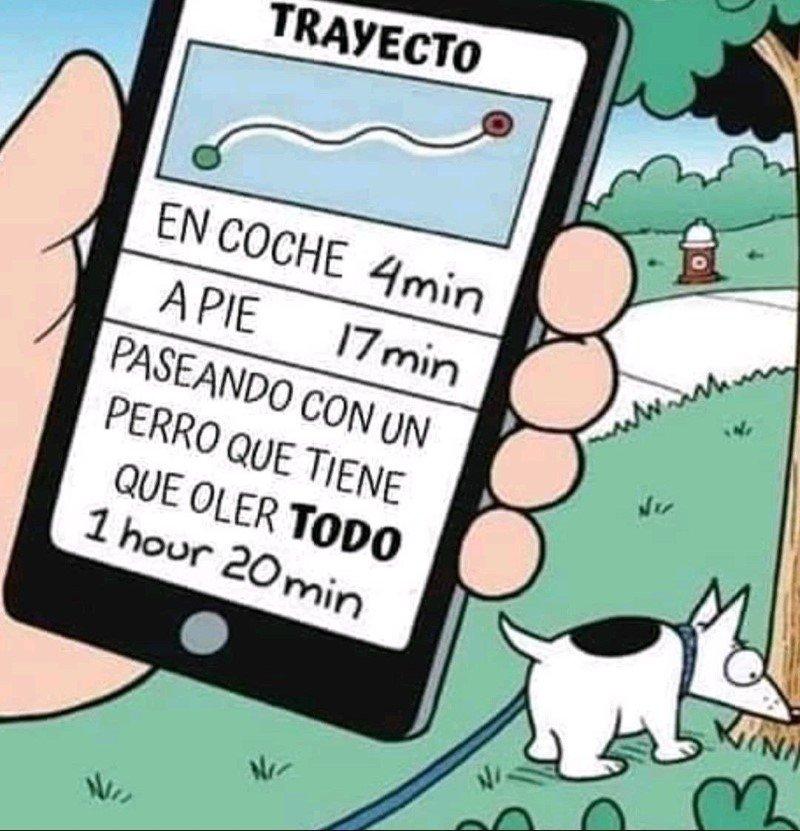 Marcianadas 476 020420210013399 (321)