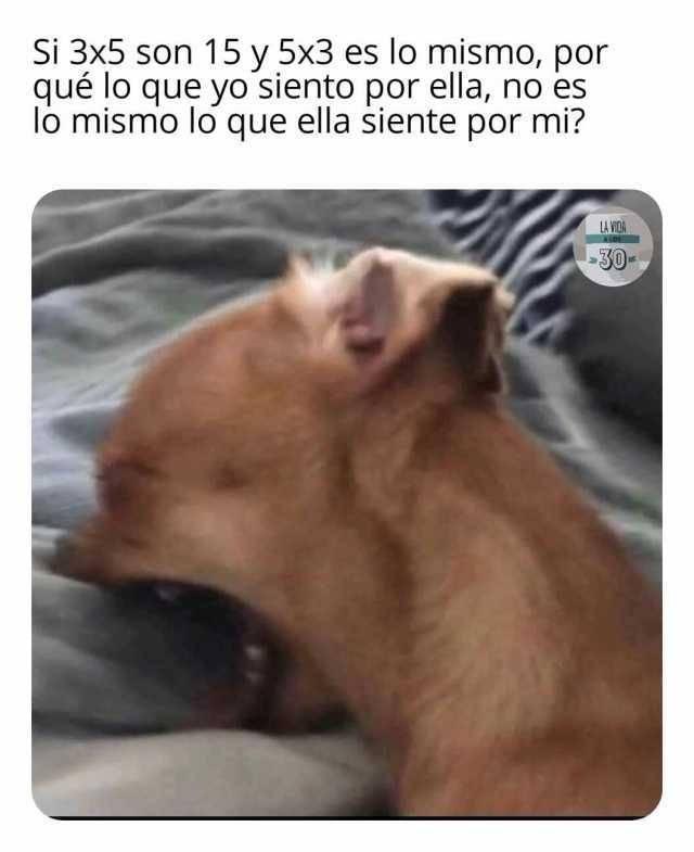 Marcianadas 481 07052021001733 (202)