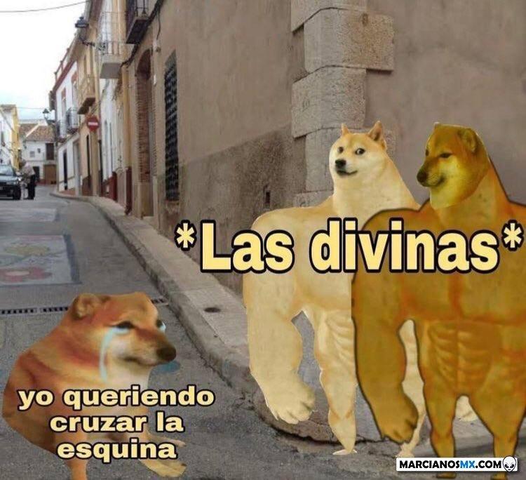 Marcianadas 484 28052021001230 (225)
