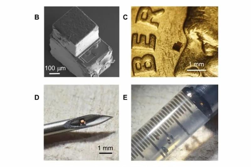 tamaño del chip implantable