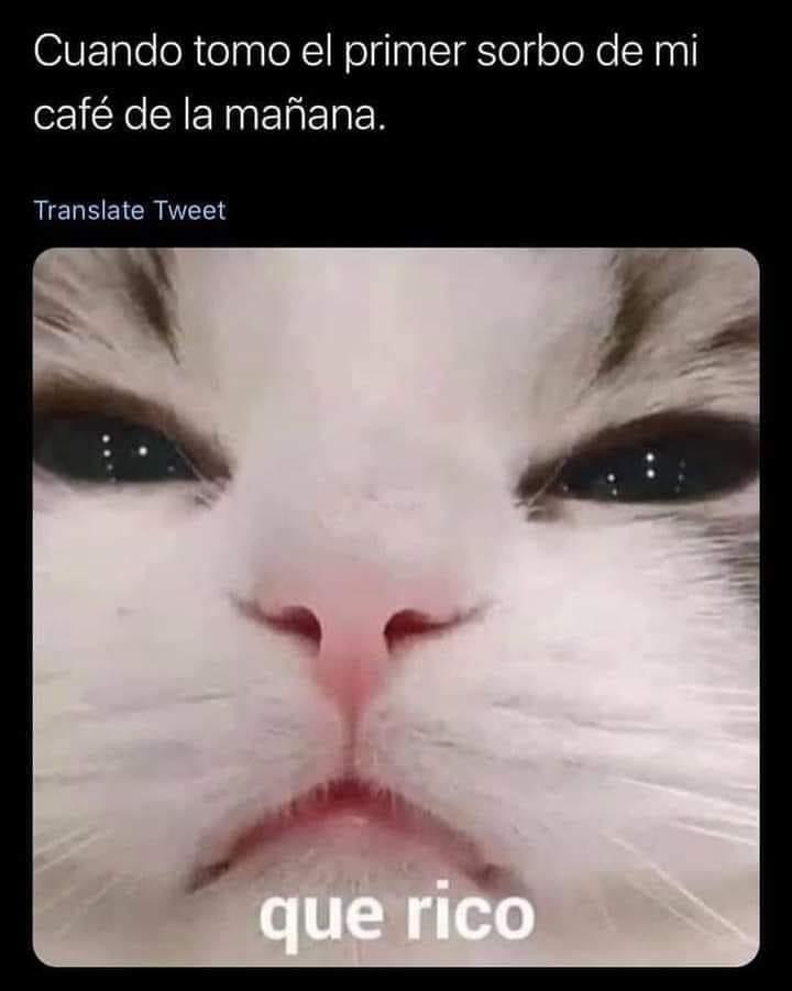 Marcianadas 488 25062021108923 (232)