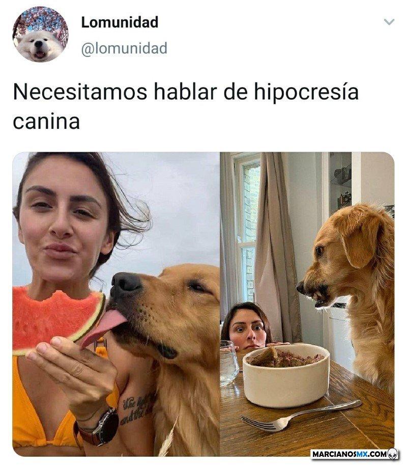 Marcianadas 488 25062021108923 (237)