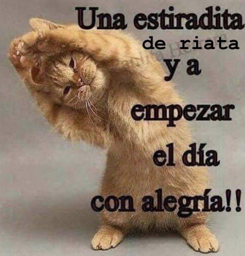 Marcianadas 488 25062021108923 (263)