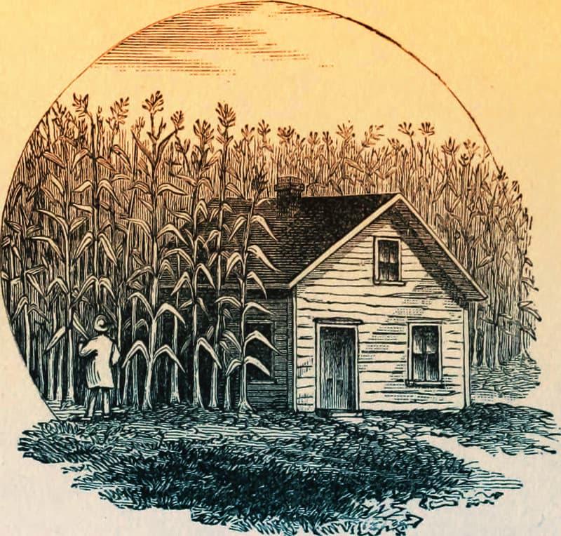 granja pequeña en 1800