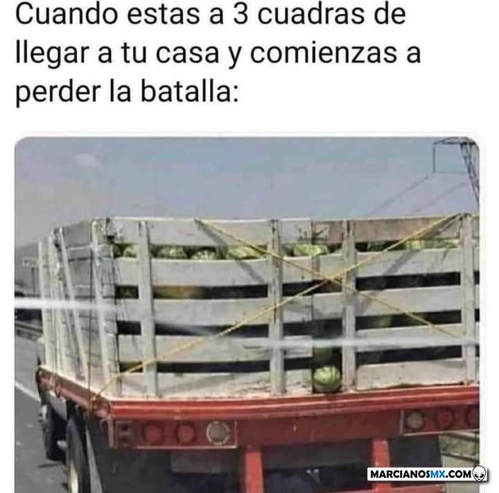 Marcianadas 489 020720211413 (176)