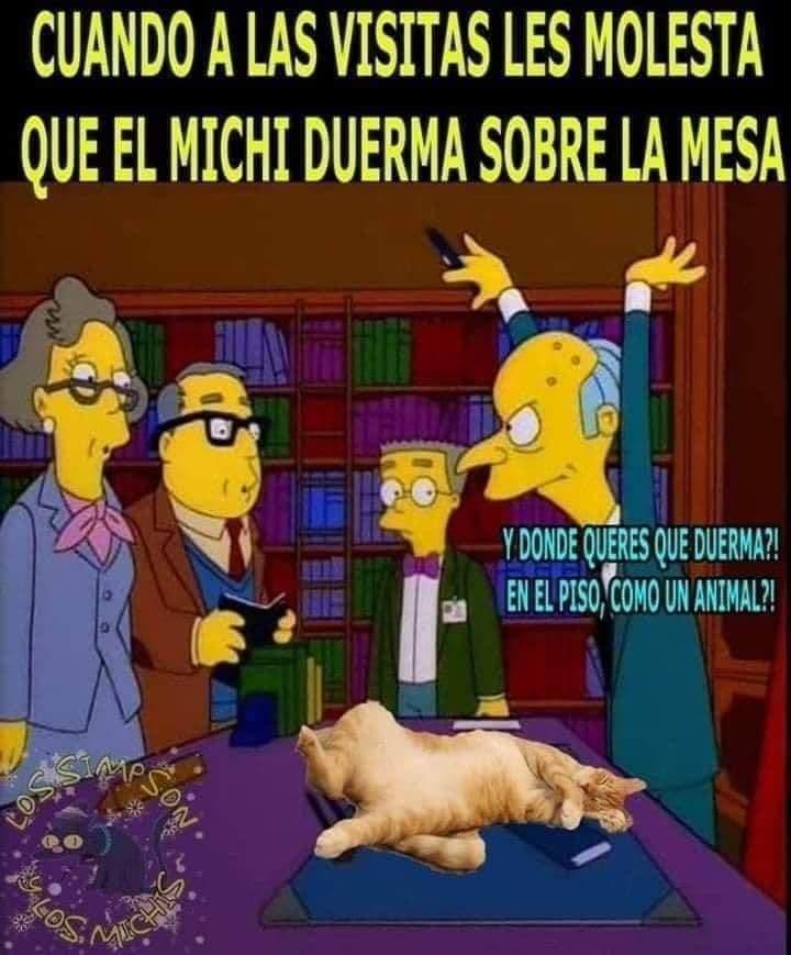 Marcianadas 489 020720211413 (179)