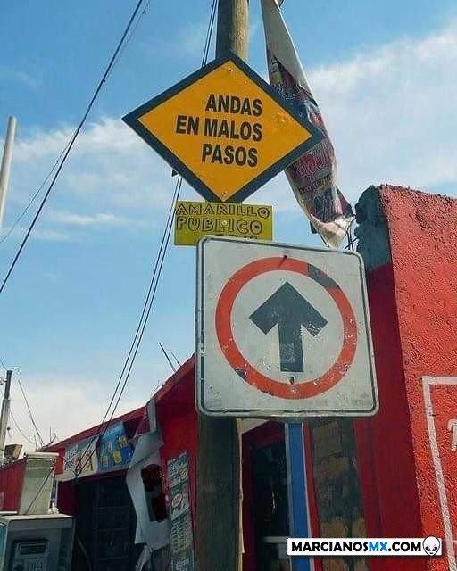 Marcianadas 489 020720211413 (195)