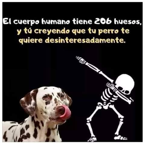 Marcianadas 492 23072021001545 (241)