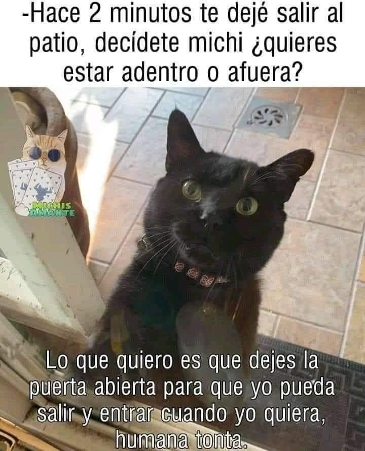 Marcianadas 492 30072021001540 (211)