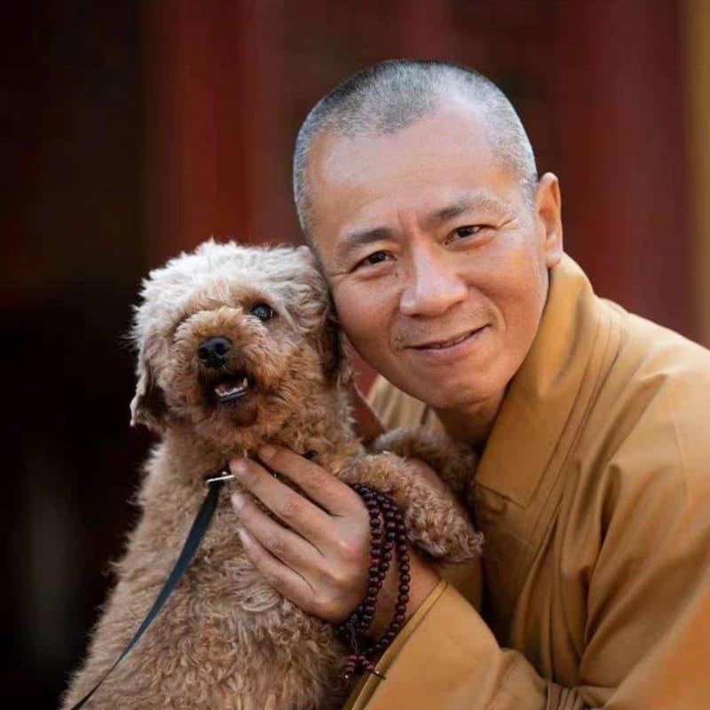Monje budista rescata miles de animales(1)