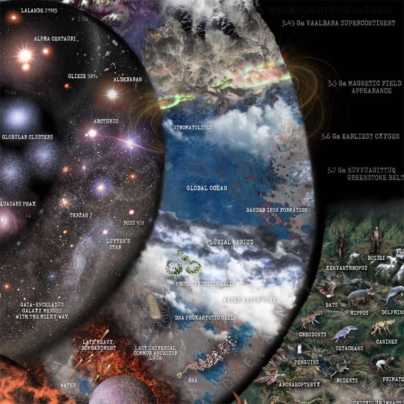 Nature Timespiral infografia (3)