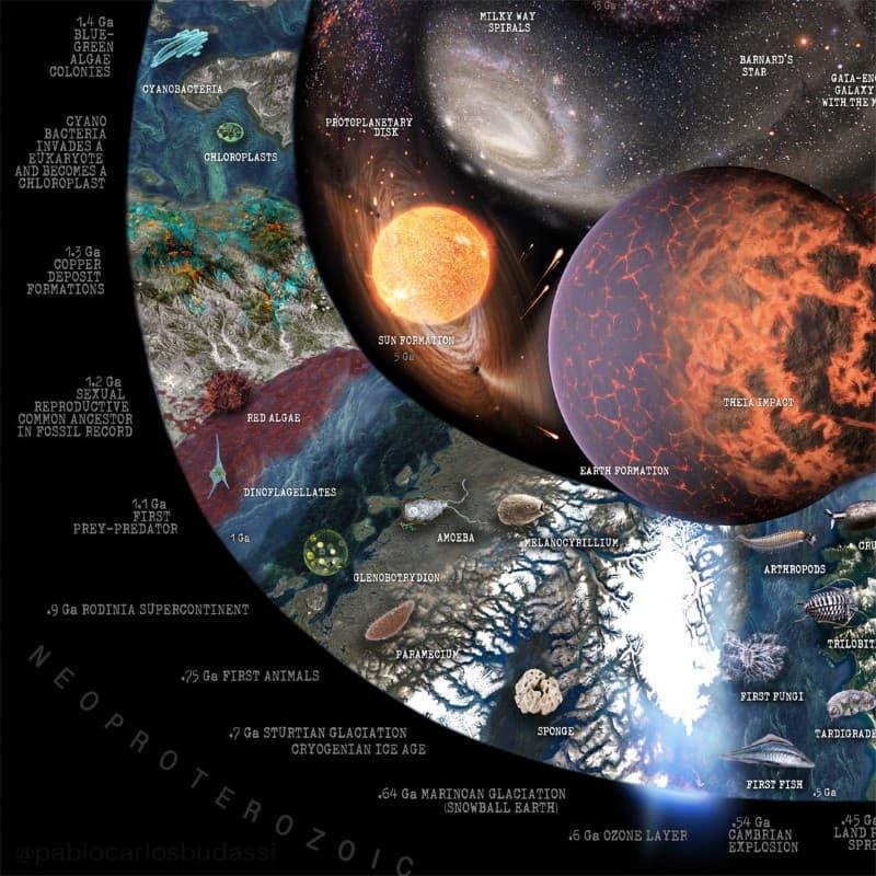 Nature Timespiral infografia (6)