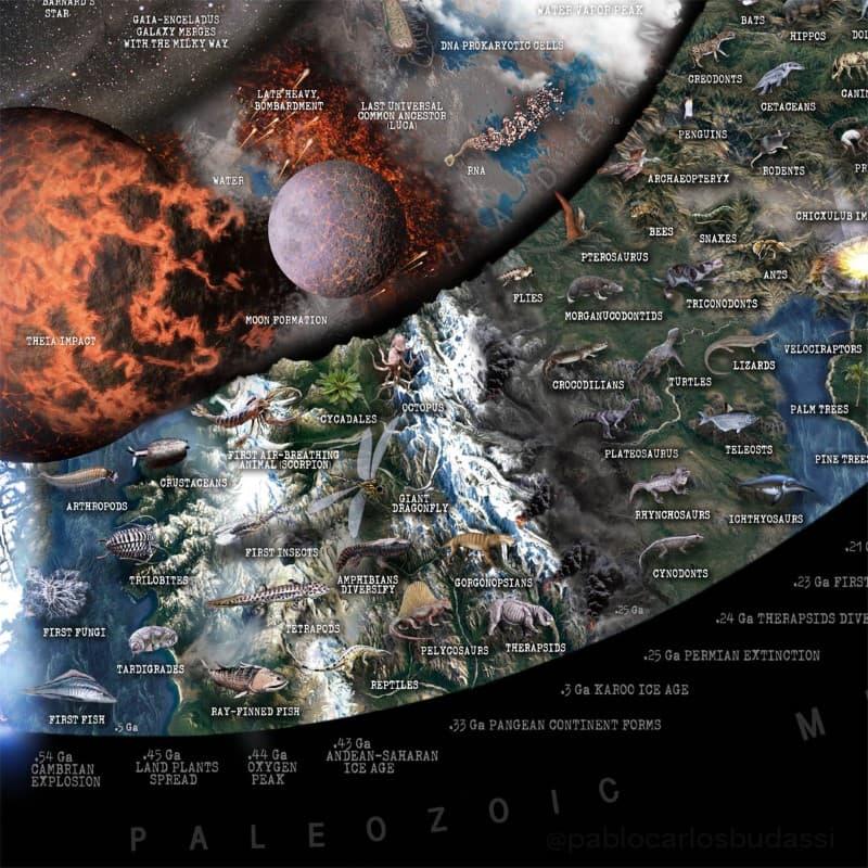 Nature Timespiral infografia (7)