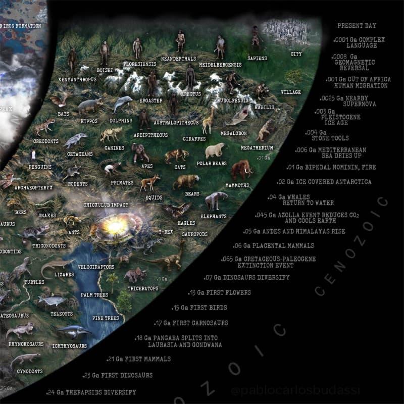 Nature Timespiral infografia (8)