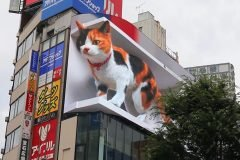 anuncio gato gigante 3D japon