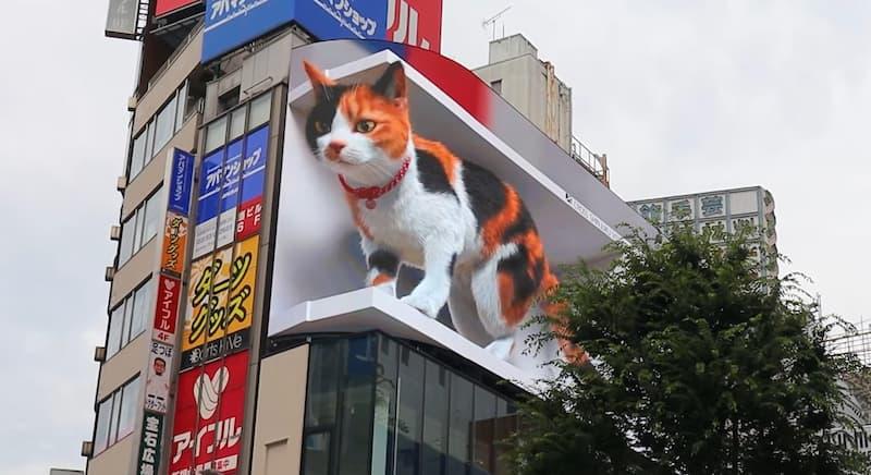 anuncio gato gigante 3D japon(1)