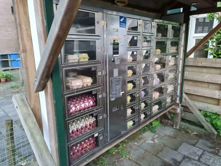 maquinas expendedoras curiosas (19)