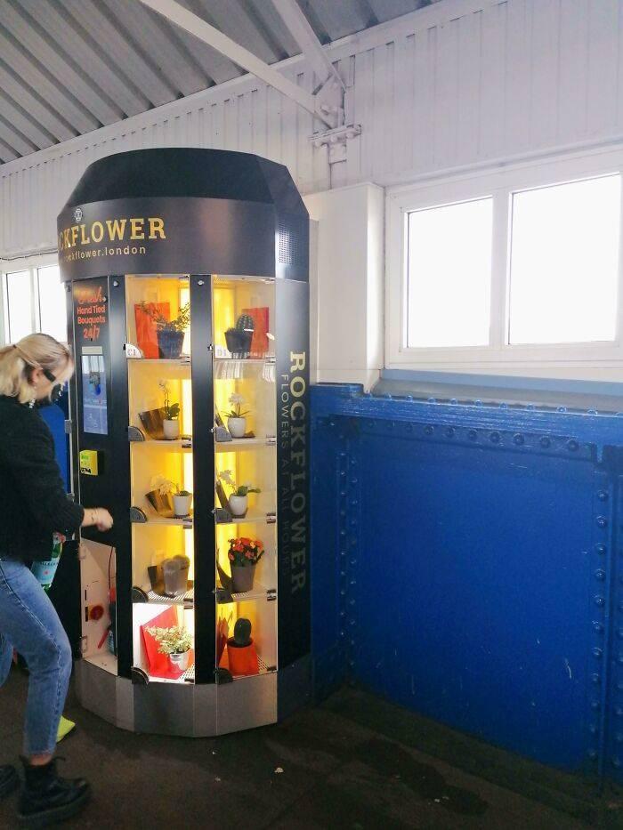 maquinas expendedoras curiosas (2)