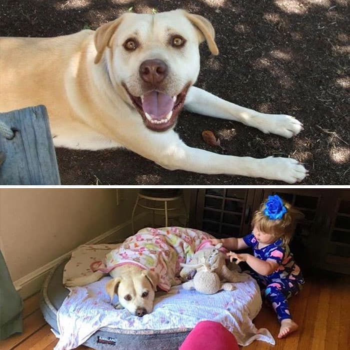 antes y despues paternidad (12)
