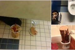 hallazgos asquerosos y extraños en baños públicos