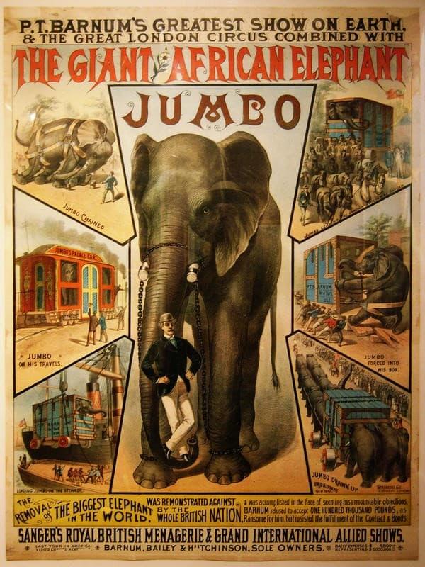 Elefante Jumbo Barnum
