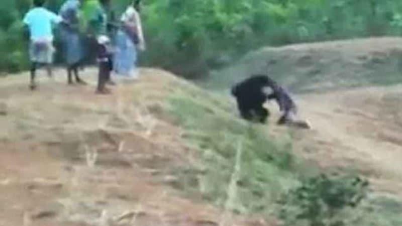 ataque letal oso en la india por selfie Prabhu Bhatara