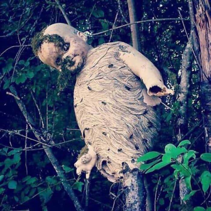 cosas aterradoras (14)
