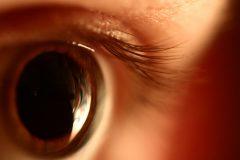 pupila dilatada(2)